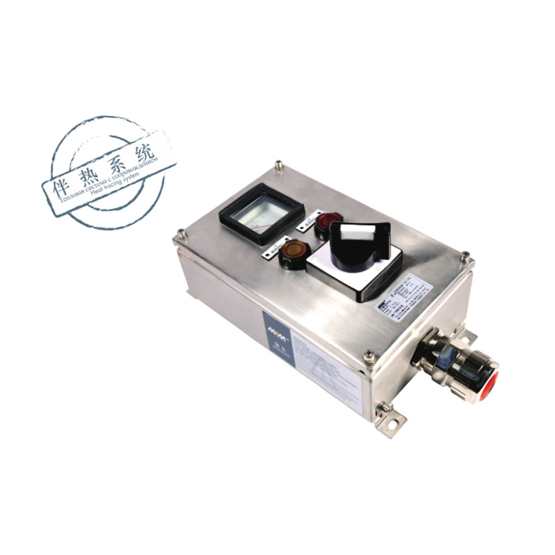 Explosion-proof control box MAMCO1-series